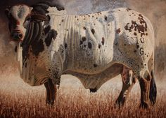 South African Contemporary and Upcoming Artist & Old Masters Art Gallery. Western Decor, Western Art, Bull Riders, Upcoming Artists, South African Artists, Cool Paintings, Rind, Dobby, Cattle