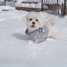 I love the cold weather !!!