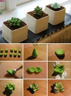 Sweet DIY succulent plant of polymer clay