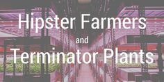 Hipster Farmers and Terminator Plants - a look at a really cool vertical farming project