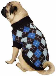 Zack & Zoey Argyle Prep Sweater Blue - SMALL holiday dog sweater - $11.99