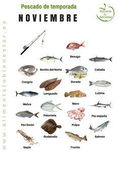 Seasonal fish in November Cooking Tips, Cooking Recipes, Food Inc, Seasonal Food, Fish Dishes, Savoury Cake, Diy Food, Seafood Recipes, Food Hacks