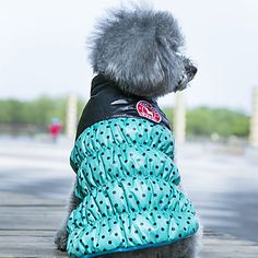 Dog+Coat+Vest+Red+Yellow+Green+Dog+Clothes+Winter+Spring/Fall+Polka+Dots+Reversible+Keep+Warm+–+USD+$+8.99