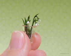 Miniature snowdrops | Rumi Lazzi | @acorntrail