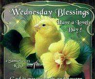 Wednesday Blessings ~~J Wednesday Morning Greetings, Wednesday Hump Day, Blessed Wednesday, Happy Wednesday Quotes, Good Morning Wednesday, Morning Greetings Quotes, Sunday, Weekday Quotes, 2 Samuel
