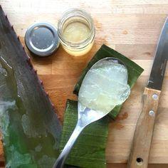 Aloe Vera, Health Fitness, Recipes, Beauty, Food, Pudding, Desserts, Tailgate Desserts, Deserts