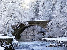 wissahickon creek philadelphia - beautiful winter photo