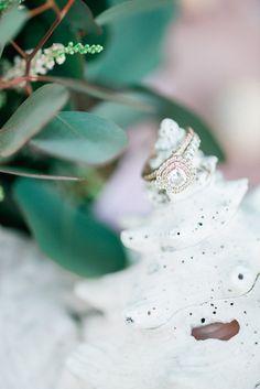 [Claire E. Walden] [Kallidoscope Photography] [Waukesha Floral & Greenhouse]