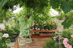 Ruusunmekko garden's greenhouse 'Verstas' in July 2015