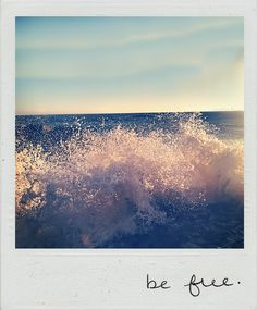 be free in the sea