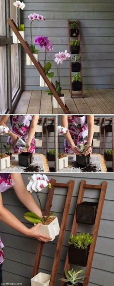 New style for vertical flower gardening ~ Maybe an old ladder would work.