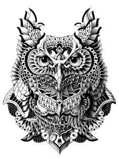 Century Owl Canvas Print