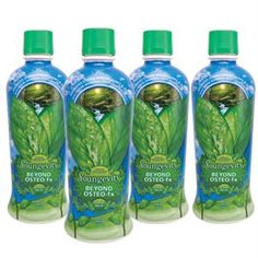 Show details for 4 Pack - Beyond Osteo Fx™ – 32 fl oz