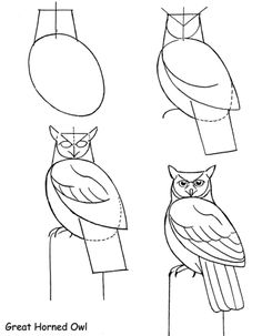 How to Draw a Bird | How to Draw Birds
