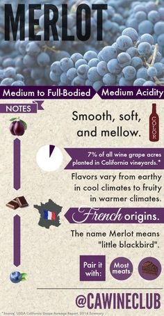 How much do you know about Merlot? #merlot #wine #winepairings #winefacts #learnwine #merlotwine #winepairing #chocolate #plums #californiawine #frenchwine