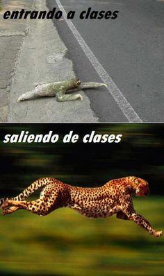 TRUE! hahaha asi voy a la escuela y asi salgo jajaja