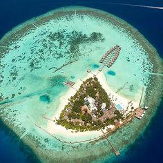 The Maldives Islands - Maafushivaru Island Resort