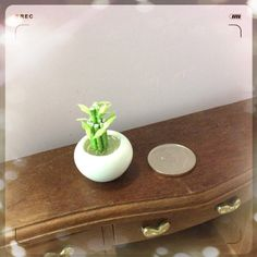 """One inch scale dollhouse miniature bamboo.  Item: 1 """" tall ( 2.5 cm)"""