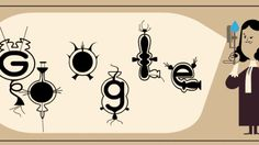 #PHP #Python Antoni van Leeuwenhoek Google Doodle marks Father of Microbiologys 384th birthday  http://pic.twitter.com/Ay9FCrDEJB   PL Pro (@PlPro4u) October 24 2016