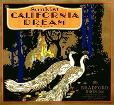 California Dream Peacock Orange Fruit Crate Label (Also in my collection) Vintage Labels, Vintage Ads, Vintage Signs, Orange Crate Labels, Fruit Art, Illustrations, Vintage Travel Posters, Mellow Yellow, Vintage Advertisements