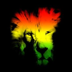 Rasta Lion Desktop Wallpapers HD