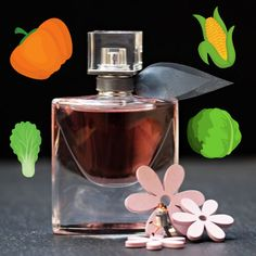 Bringing a new experience that is olfactory perfume, Mugler Les Exceptions Cuir Impertinent Eau de Parfum combines the smokiness of tanned leather with the unexpected… Vegan Perfume, Best Fragrances, Perfume Collection, Best Perfume, Vegan Beauty, Body Spray, How To Memorize Things, Perfume Bottles, Vegan Life