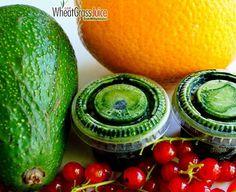 Zielone koktajle: porzeczki + awokado + pomarańcza + sok z trawy pszenicznej
