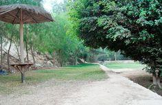 Sauce Alto Resort |Instalaciones | Zona de áreas verdes en sauce alto.
