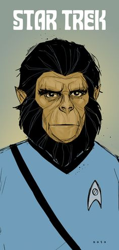 Star Trek and Planet of the Apes mash-up - WANT this poster.
