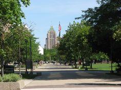 94 Best Wayne State University images