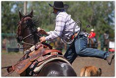 Cowboy Saddle up