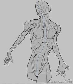 Exceptional Drawing The Human Figure Ideas. Staggering Drawing The Human Figure Ideas. Human Figure Drawing, Figure Drawing Reference, Art Reference Poses, Anatomy Reference, Human Anatomy Drawing, Body Drawing, Life Drawing, Female Drawing, Drawing Faces