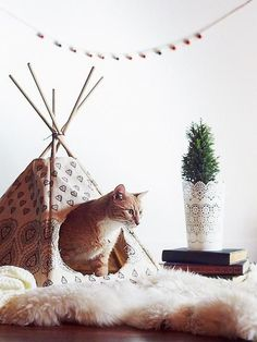 Pets, Home & Garden: Ideal toys for small cats Cat Teepee, Cat Tent, I Love Cats, Crazy Cats, Cool Cats, Diy Pour Chien, Ideal Toys, Small Cat, Pet Beds