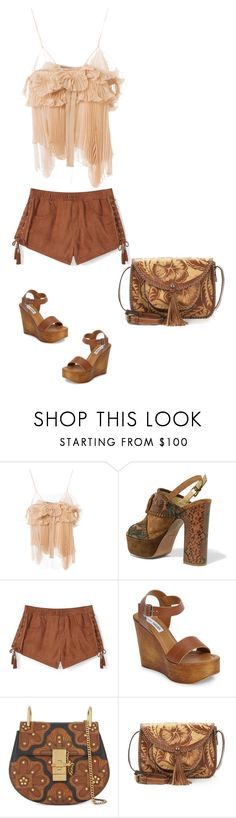 """Untitled #6468"" by lovetodrinktea ❤ liked on Polyvore featuring Rochas, Ash, Rebecca Minkoff, Steve Madden, Chloé and Patricia Nash"