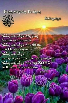 Greek Quotes, Good Morning, Plants, Cards, Easter, Buen Dia, Bonjour, Easter Activities, Plant