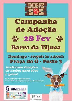 BONDE DA BARDOT: RJ: Adoção de cães e gatos na Barra da Tijuca, neste domingo (28/02)