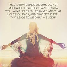 Meditation brings wisdom; lack of meditation leaves ignorance. Know well what leads you forward and what holds you back, and choose the path that leads to wisdom. — Buddha