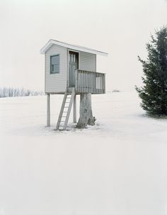 Deer stand in Wisconsin, USAcaptured by photographerJason Vaughnfor his ongoing project Hide. Submitted by Joao Graca.