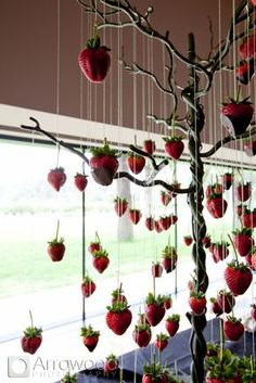 suspended chocolate covered strawberries by McCalls Catering