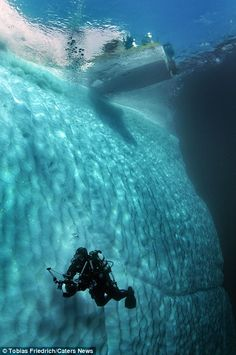 Incredible photos reveal what icebergs look like BELOW the surface Tobias explained that he has to wait for good weather before donning his scuba gear and taking his camera into the water Under The Water, Under The Ocean, Scuba Diving Gear, Cave Diving, Photo Bleu, Nature Sauvage, Underwater Photographer, Deep Blue Sea, Sea World
