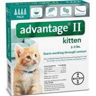 F.c.e. Inc D Advantage 2 Cat