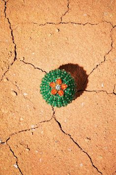 Cartier's concept was inspired by a rather more prickly natural phenomenon - the #cactus Picture credit: #Cartier #western
