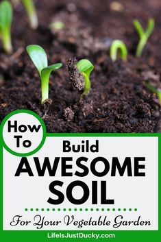 How To Prepare Awesome Soil For Your Vegetable Garden – Life Is Just Ducky Learn all about soil. How it is alive and how it feeds your plants. Learn to make the ultimate garden soil. Prepare garden soil to grow the healthiest vegetables you can. Vegetable Garden Soil, Planting Vegetables, Healthy Vegetables, Garden Pests, Organic Vegetables, Growing Vegetables, Growing Plants, Garden Insects, Planting Seeds