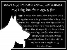 Don't say I'm not a mom, just because my baby has 4 legs & fur