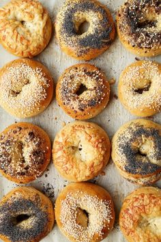 Different types of bagels inspired by the classic New York Bagels. Everything, Sesame, Poppy Seed and Asiago Cheese give you a few options to choose from! Types Of Bagels, New York Bagel, Ny Bagel, Bagel Bar, Asiago Cheese, Bagel Recipe, Morning Food, Bread Recipes, Food And Drink