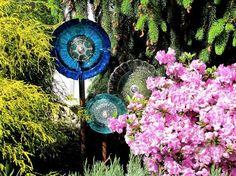 garden projects, garden glass, garden art, plate, stem, dish flowers, glass garden