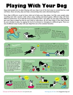 Dog Games to Play With Your Dog