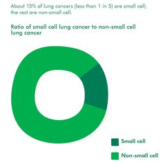 About 15% of lung cancer cases (less than 1 in 5) are small cell; the rest are non-small cell. This infographic is taken from our booklet Understanding lung cancer, which you can order free from be.macmillan.org.uk