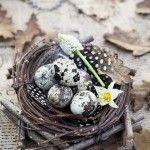 természetes Húsvéti dekoráció