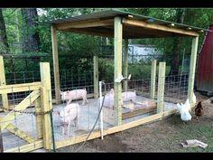 How to build a pig pen design - Organic Hogs - YouTube